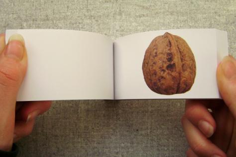 walnut-peep-show